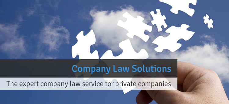 Company Law Solutions